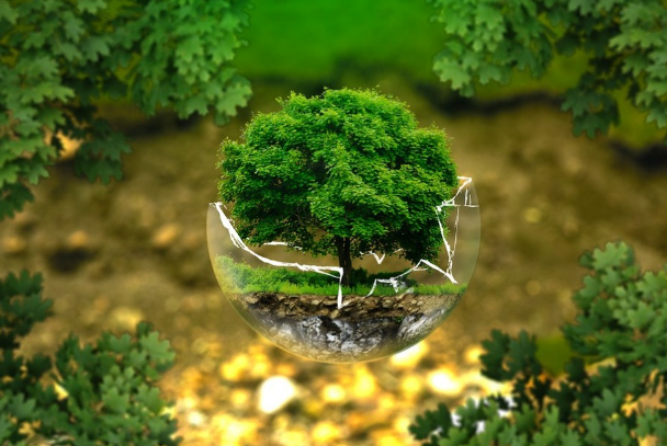 Pengertian Lingkungan Menurut Para Ahli !