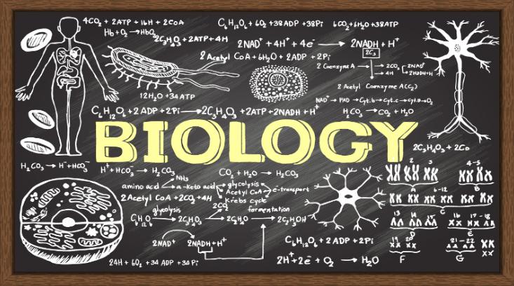 Pengertian BiologiPengetian Biologi | Fungsi, Tujuan dan Manfaat Mempelajari Ilmu Biologi