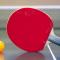 Pengertian Tenis Meja, Sejarah, Teknik, Ukuran Lapangan, dan Peralatan Tenis Meja