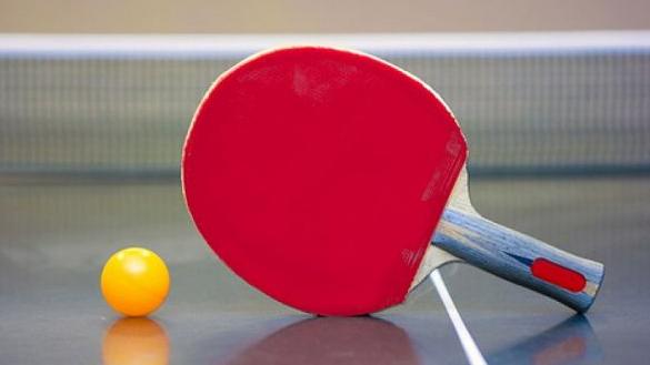 Pengertian Tenis Meja Sejarah Teknik Ukuran Lapangan Dan Peraturan