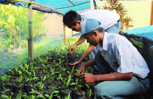 Pengertian Prakarya dan Wirausaha | Manfaat dan Tujuanya Lengkap !